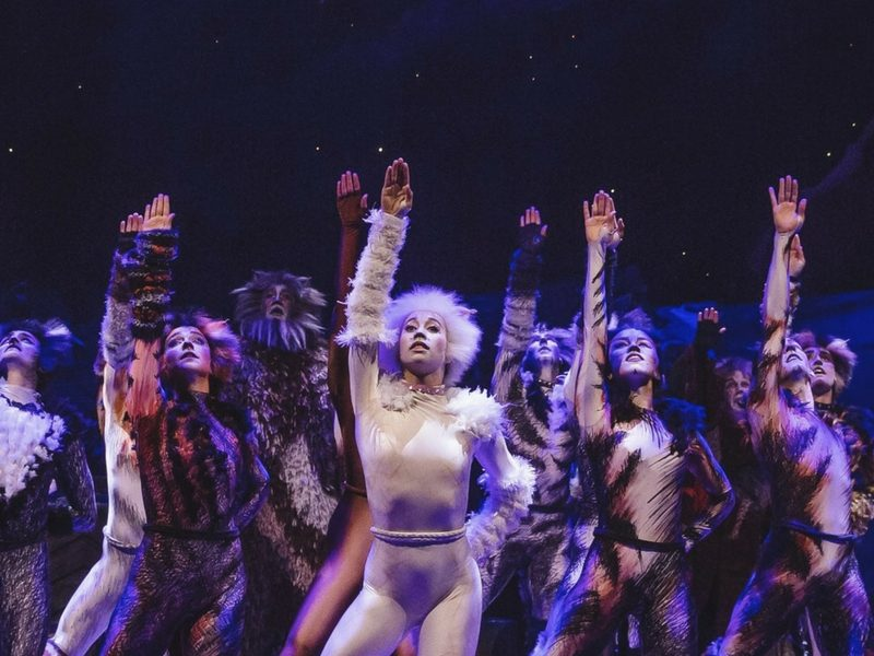 best-broadway-shows-2017-june-cats-the-musical