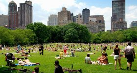 things to do in nyc summer 2017