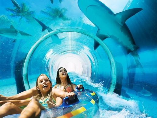 Aquaventure waterpark tickets shark attack