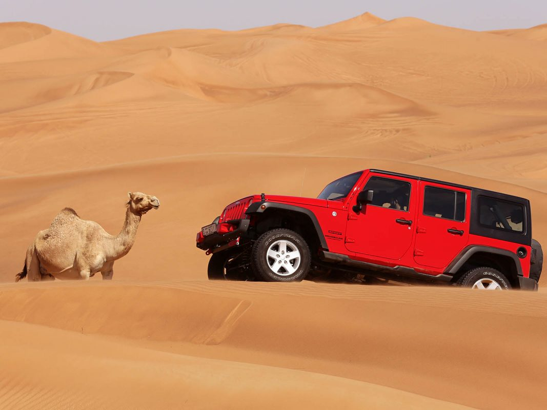 the complete dubai desert safari guide tickets tips. Black Bedroom Furniture Sets. Home Design Ideas