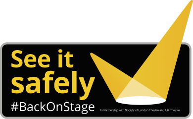 see-it-safely